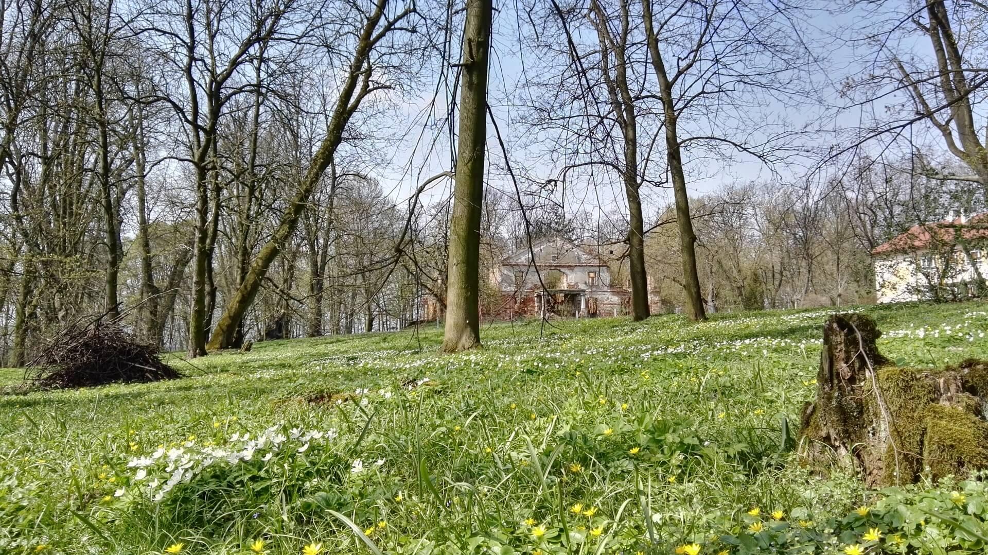 Руины двора Любенских